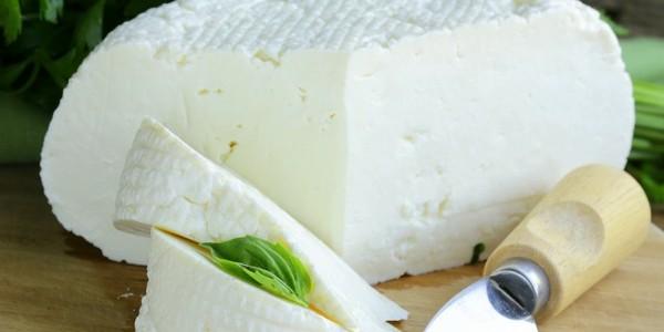 польза сыра брынза