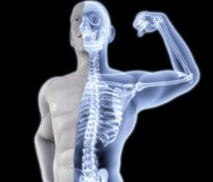 Крепкие кости