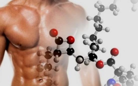 Лучшие аптечные аминокислоты для роста мышц: как принимать, отзывы