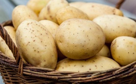 Картофельная диета: меню на 3 и 10 дней, отзывы и результаты