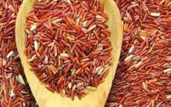 Польза и вред красного риса — необычного злака для гурманов