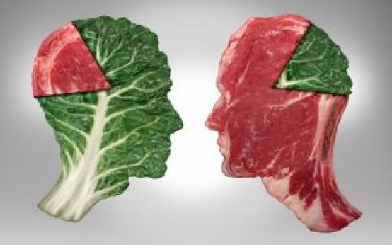 Польза и вред вегетарианства: научные исследования, аргументы за и против
