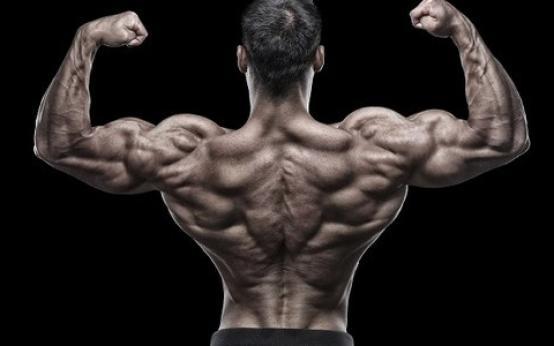 Как накачать мышцы спины (широчайшие, ромбовидные, большую круглую) дома
