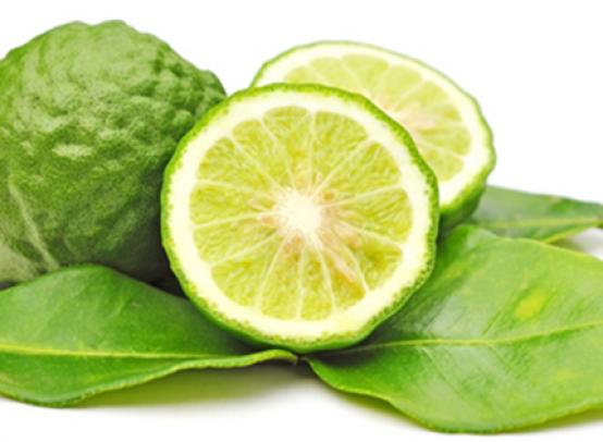 Польза и вред чая с бергамотом для организма, как правильно заваривать и пить