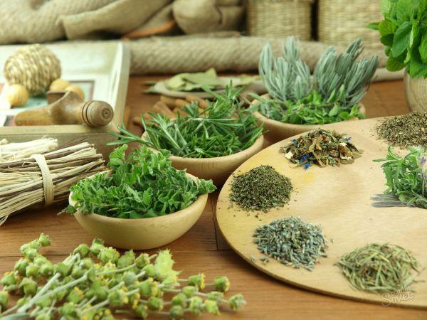 Лекарственные травы понижающие аппетит
