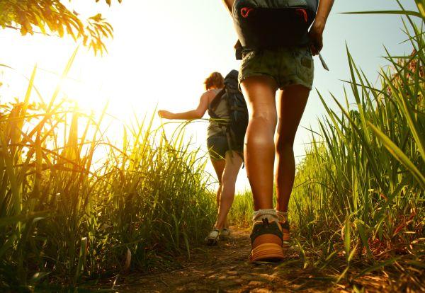Маршрут прогулки