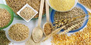 разрешенные продукты при дисбактериозе