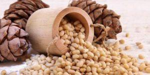 польза ядер кедрового ореха