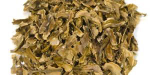 Польза от перегородки греческого ореха
