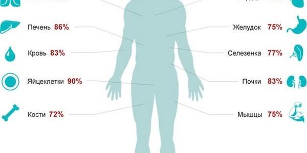Участие воды в физиологических процессах
