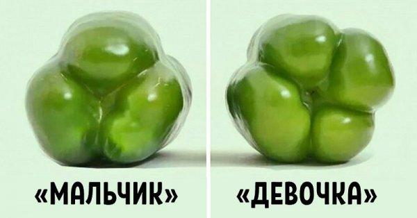 Выбор овощей