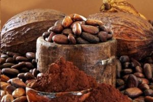 Элитные какао-бобы