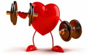 Крепкое сердце